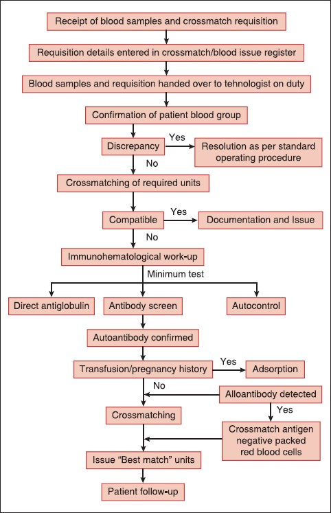 autoimmune hemolytic anemia: from lab to bedside chaudhary r k, Skeleton
