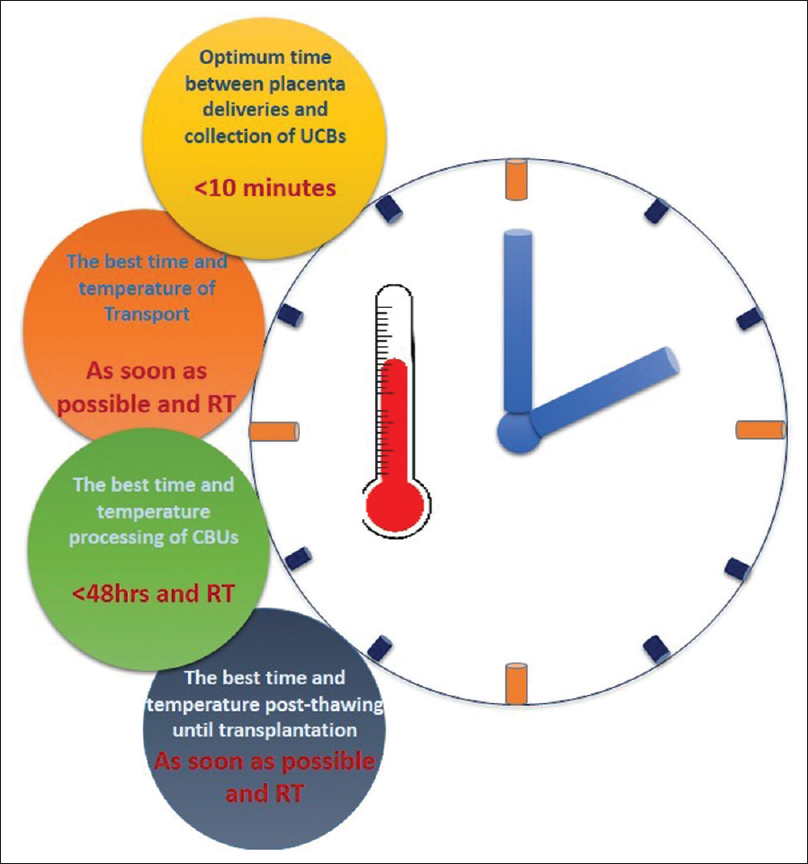 Figure 2: The best time and temperature in different steps of umbilical cord blood collection until transplantation